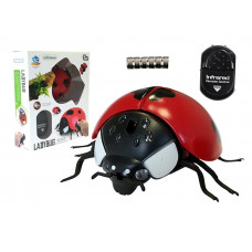 Inlea4Fun RC Ladybug Beruška na dálkové ovládání Preview