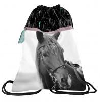 Sáček tělocvik PASO HORSE 45 x 34 cm