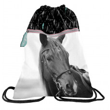 Sáček tělocvik PASO HORSE 45 x 34 cm Preview